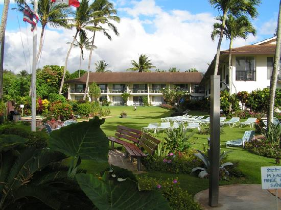 Napili Surf Beach Resort: grounds and rooms