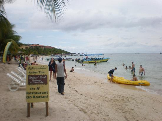 Roatan Christopher Tours: West Bay Beach