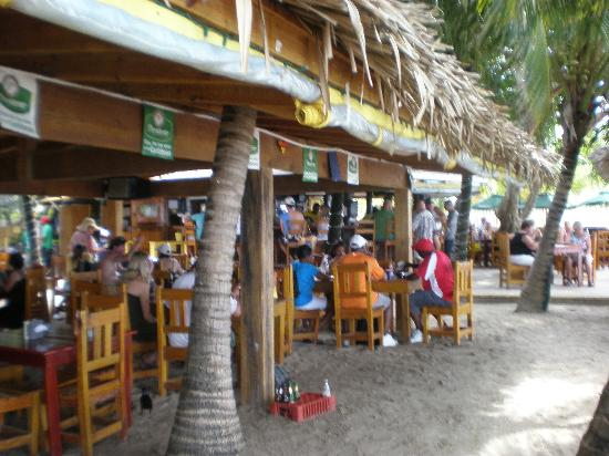 Roatan Christopher Tours: facility at Beach....Bananarama