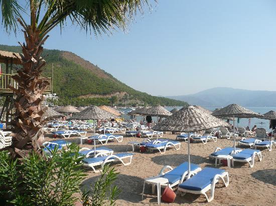 Hotel Aqua: Hotel Beach