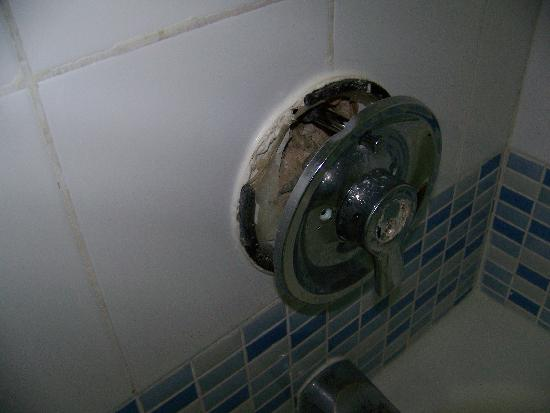 Qawra Palace Hotel: shower control coming away from wall