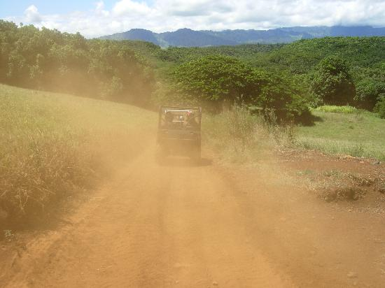 Kipu Ranch Adventures: In the Dust!!!!!