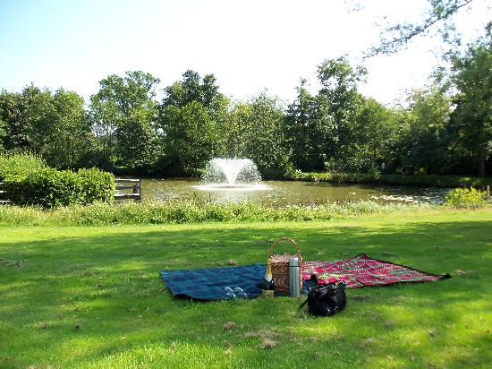 Ashdown Park Hotel & Country Club: Afternoon tea picnic basket by the lake