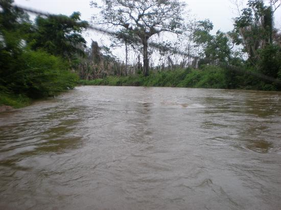 Cave Tubing & Zip Line with Explore Belize Caves: The River