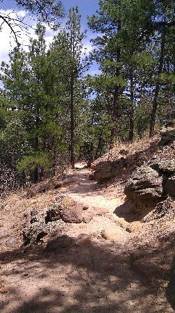 Palmer Park Trail