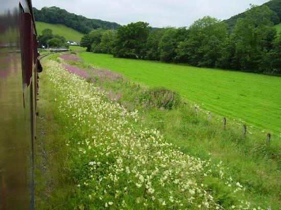 Gwili Railway: I love Wales