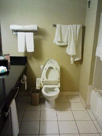 Miyako Hotel Los Angeles: bathroom