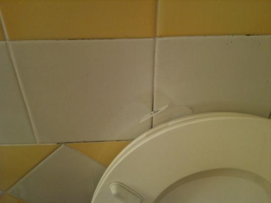 Miramare e Castello Hotel: Miramare e Castello - mildew on toilet walls