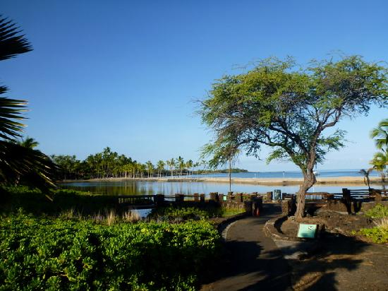 Waikoloa Beach Marriott Resort & Spa: The ancient Anchialine fish ponds