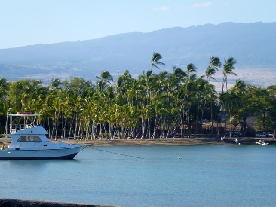 Waikoloa Beach Marriott Resort & Spa: Anaeho'omalu Bay behind the hotel