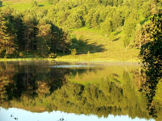Aigas Field Centre: Early morning on a glass loch