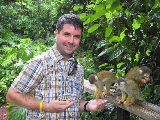 Monkey Jungle: Rainforest Adventure Tour