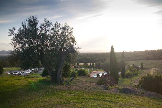 Agriturismo Cerrosughero: Vista dalle Suite