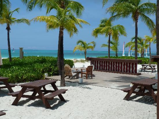 Club Med Turkoise, Turks & Caicos: Vue de la mer près du resto-bar de la plage