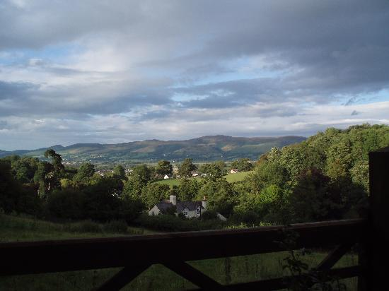 Fir Grove Country House: View from the B&B
