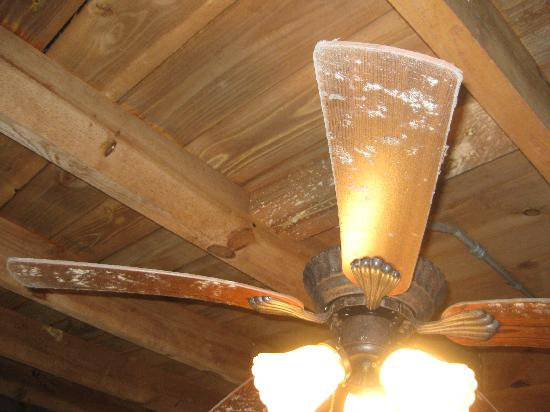 Backhome Log Cabins: Dirty deck fan