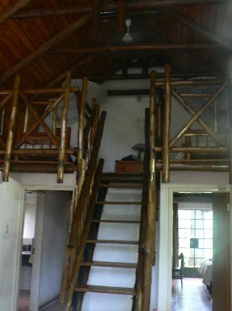 Burchell's Bush Lodge : Loft bedroom
