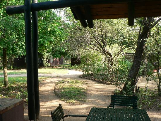 Burchell's Bush Lodge: view of gardens