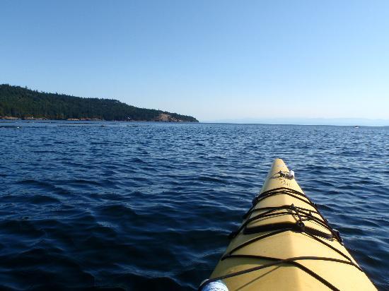 Crystal Seas Kayaking - Day Tours: Crystal Seas Kayaking