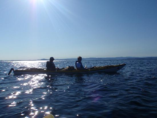 Crystal Seas Kayaking - Day Tours: Crystal Seas Kayaking