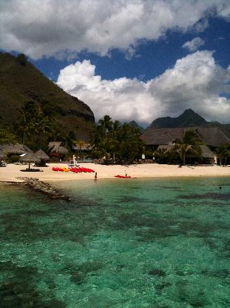 Hilton Moorea Lagoon Resort & Spa: beach_hilton