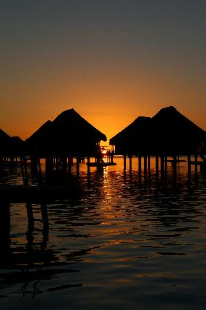 Hilton Moorea Lagoon Resort & Spa: sunset_2