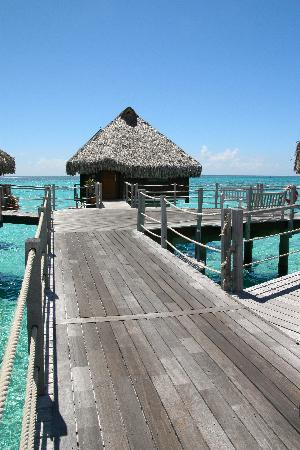 Hilton Moorea Lagoon Resort & Spa: our bungalow