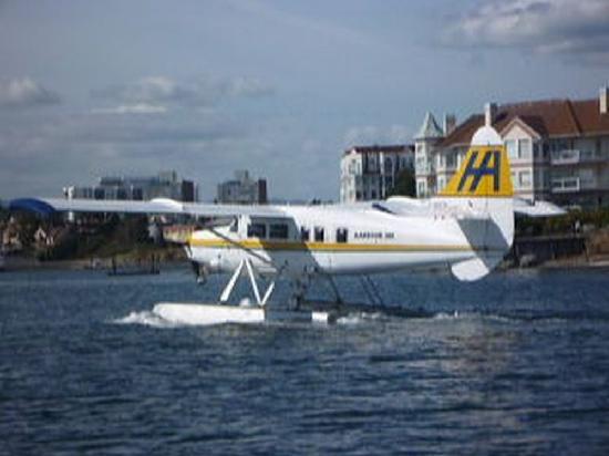 Best Western Plus Inner Harbour: Float plane