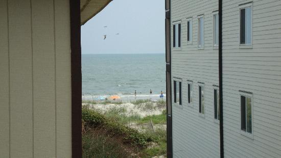 โอเชียนไอเซิลบีช, นอร์ทแคโรไลนา: Ocean view from condo