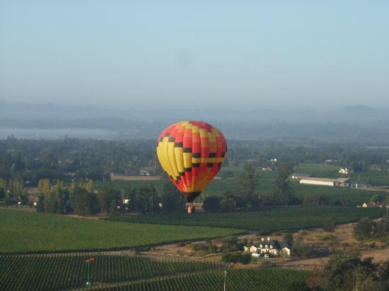 Up & Away Ballooning: Flying over Santa Rosa