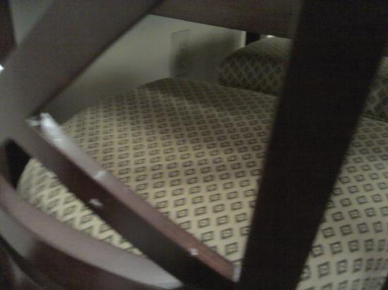 Holiday Inn Express Hotel & Suites Dothan North: Spill on back of table chair