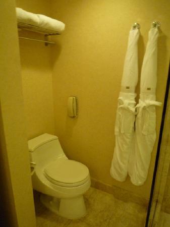โรงแรมคอนราด เซ็นเทนเนียล สิงคโปร์: Toilet