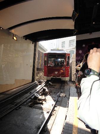 Bubba Gump Shrimp Co.: The peak tram..
