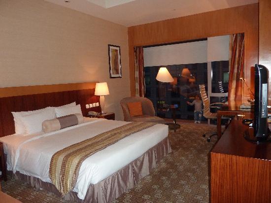 โรงแรมพาร์ค พลาซ่า ปักกิ่ง แวงฟูจิง: Room