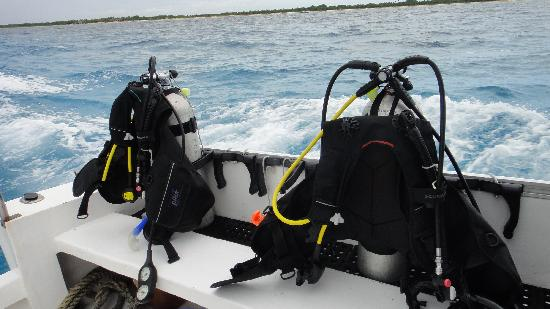 Pro Dive Mexico: Equipment ready for diving!