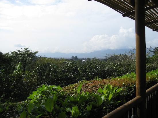 Finca Rosa Blanca Coffee Plantation Resort: The view at breakfast...