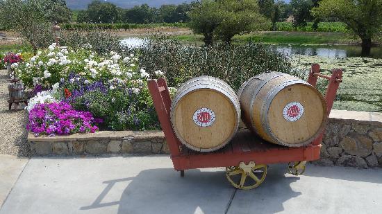 Reynolds Family Winery: Wine barrels near garden