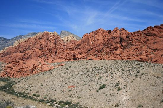 Red Rock Canyon National Conservation Area: colori incredibili