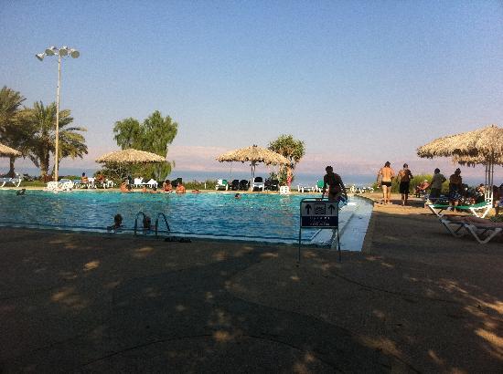 Kibbutz Ein Gedi : La piscine