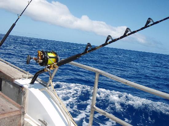 WaHoo Fishing Charters: RElaxing troll in deep blue water
