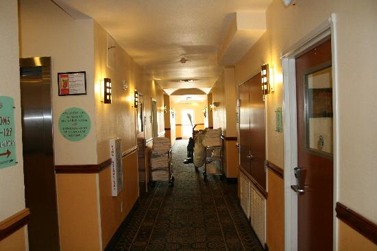 Super 8 Austin/Airport North: The rooms and hallways are always clean and pleasantly scented.