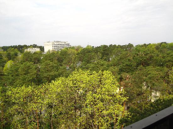 โรงแรมเจอร์มาล่าสปา: The view from the balcony