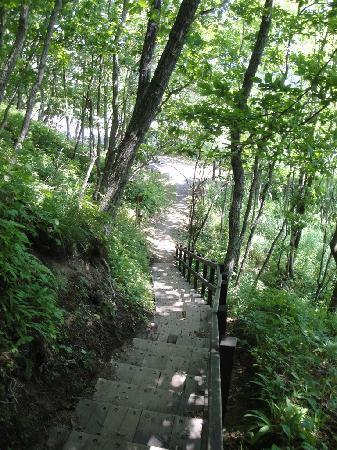 Sarubo Observatory: 步道