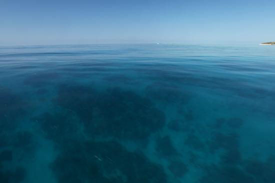 เฮรอน ไอแลนด์ รีสอร์ท: The crystal clear waters