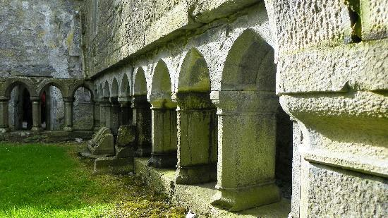 Galway Tour Company: Inside Ross Errily Friary