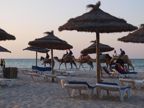 Iberostar Mehari Djerba: Strand
