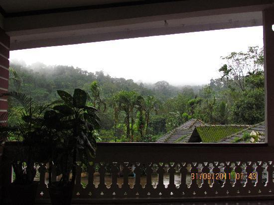 Naladi Holidays: View from the balcony