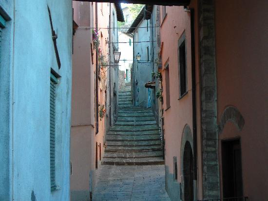Casa Fontana Tuscany B&B : Barga's oldest street from our room