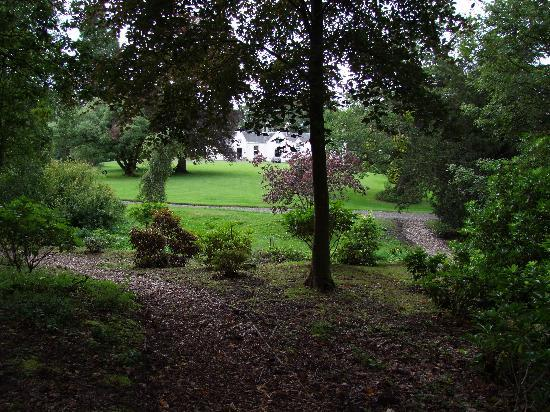 West Plean House: View from the garden - amazing assortment of plants