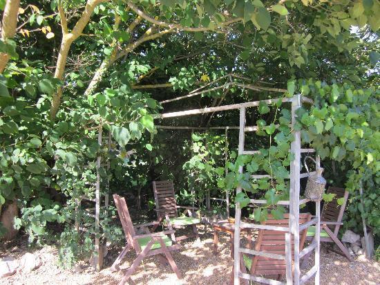B&B la Bastide de Messine : Il giardino